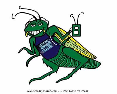 Cartoon Cricket by Brandi Jasmine, All Rights Reserved