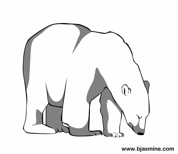 Polar Bear Line Drawing by Brandi Jasmine, All Rights Reserved