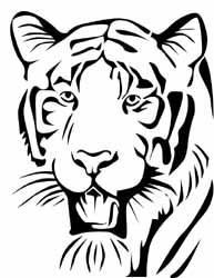 Tiger Jack-O-Lantern Pattern