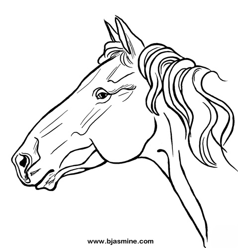 Horse Line Drawing by Brandi Jasmine, All Rights Reserved