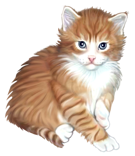 Kitten Portrait Digital Airbrush